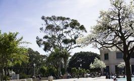 巴波亚公园 库存图片