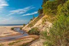 波儿地克的海滩覆盖海岸线palanga反映湿沙子的海运 图库摄影