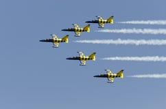 波儿地克的蜂飞行表演 库存图片