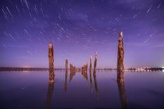 波兰人在水中在与星的晚上落后 免版税库存图片