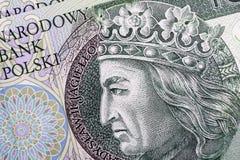 波兰兹罗提 免版税库存照片