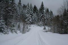 波兰冬天 免版税库存图片