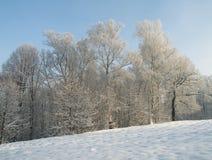 波兰冬天 图库摄影