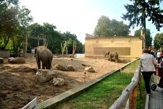 波兰动物园 免版税库存照片