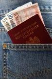 波兰护照 库存照片
