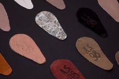 波兰波兹南 7 11 皮肤18张照片编结与公司的商标  98 免版税库存照片