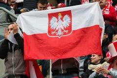 波兰爱好者 库存图片