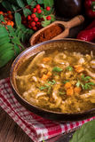 波兰牛肉肚汤 免版税图库摄影