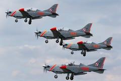 波兰空军队PZL-Okecie PZL-130 TC-1 Orlik涡轮螺旋桨发动机,单引擎,两供以座位在形成的教练机飞行 免版税库存照片