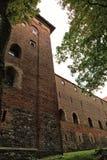 波兰老城堡尼济察 库存图片