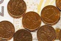 波兰金钱,特写镜头 库存图片