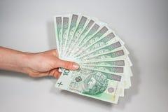 波兰金钱 免版税库存照片
