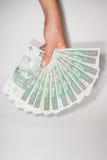 波兰金钱 库存图片