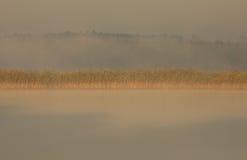 波兰 在湖的有薄雾的秋天早晨 水平 免版税库存照片