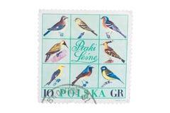 波兰-大约1966年:在展示打印的邮票另外k 库存照片