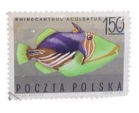 波兰-大约1967年:在展示打印的邮票镶边 库存照片
