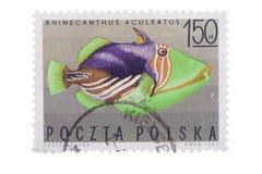 波兰-大约1967年:在展示打印的邮票镶边 免版税库存照片