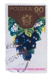 波兰-大约1974年:在展示打印的邮票Blackcurr 库存图片