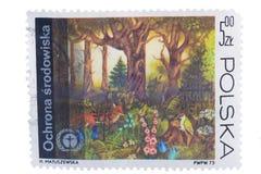 波兰-大约1973年:在显示protectio打印的邮票 库存图片