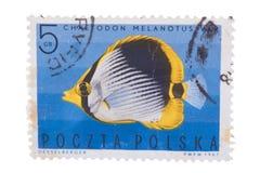 波兰-大约1967年:打印的邮票,展示钓鱼小条 免版税库存图片