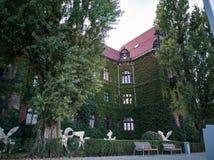 波兰 免版税图库摄影