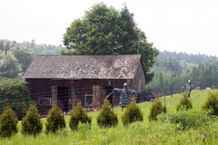 波兰 免版税库存图片