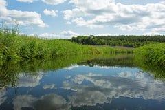 波兰 Brda河在夏天 艺术性的详细埃菲尔框架法国水平的金属巴黎仿造显示剪影塔视图的射击 免版税图库摄影