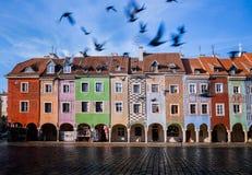 波兹南,老市场 大广场在波兹南老镇 波兰 免版税库存照片