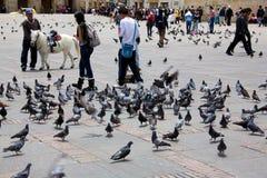波利瓦广场波哥大 免版税库存照片