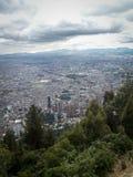 波哥大树和城市视图画象 免版税图库摄影