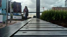 波哥大DowntownÂ的公园 图库摄影
