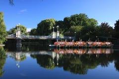波士顿从事园艺公共 库存照片