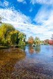 波士顿共同在秋天 免版税库存照片