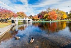 波士顿共同在秋天 免版税图库摄影