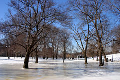 波士顿冬天 库存照片
