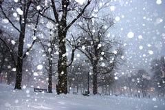 波士顿冬天 免版税库存照片