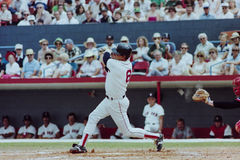 波士顿卡尔・ Red Sox yastrzemski 库存照片
