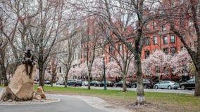 波士顿后面海湾在春天 免版税图库摄影