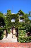 波士顿大学 免版税库存照片