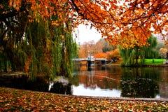 波士顿庭院公共 库存照片