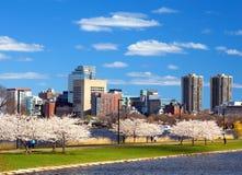 波士顿春天 库存图片