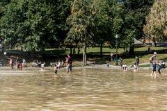 波士顿,麻省,美国06 09 2017 - 家庭孩子和人在热的夏日公园的青蛙池塘享用冷却喷头 免版税图库摄影