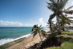 波多黎各海滩场面 免版税库存照片