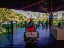 波尔图加利尼亚斯岛,累西腓,巴西,2019年2月,7日 Ancorar手段 免版税库存照片