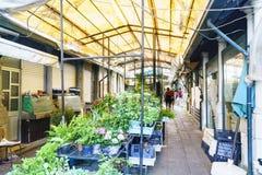 波尔图葡萄牙 2017年8月12日:花和植物在其中一个新古典主义的市场的走廊中失去作用叫作Bolhao  免版税库存照片