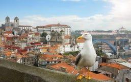 波尔图,葡萄牙全景。 库存图片