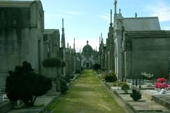 波尔图,葡萄牙-坟茔和一条绿色沈默道路三行在Agramonte公墓,天光的 免版税库存图片