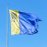 波尔图Velho& x27; s旗子 与Tres的标志的蓝色和黄旗 免版税库存照片