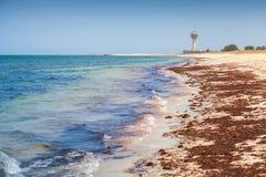 波斯湾海岸在沙特阿拉伯 免版税库存图片