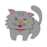 波斯猫传染媒介 库存图片